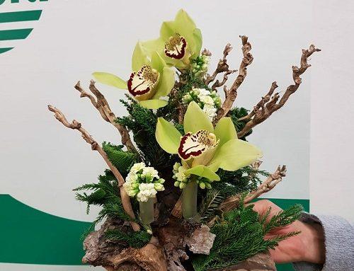 I fioristi preparano il Natale: concluso il workshop a Bagnacavallo